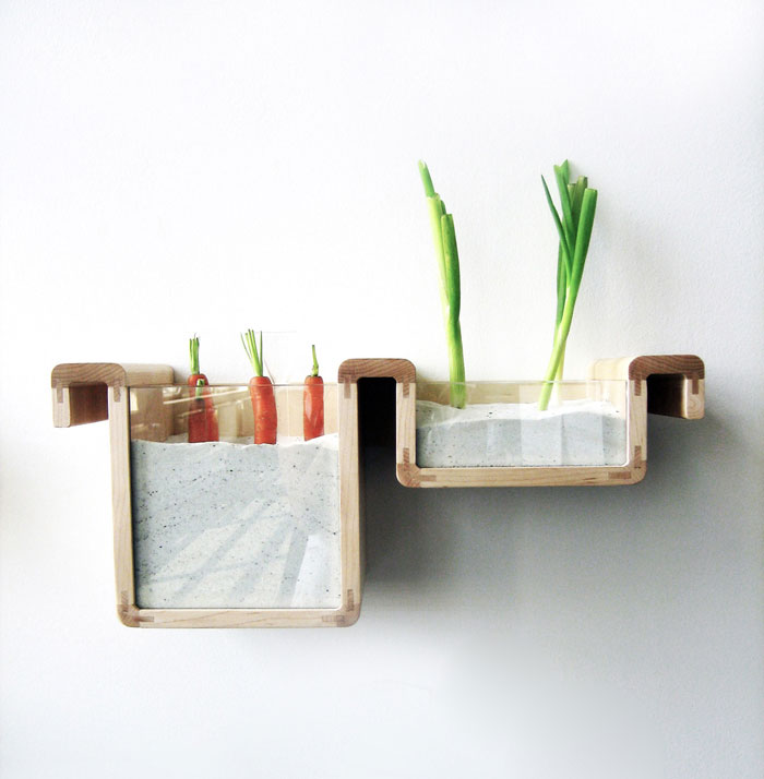 Taste-Studio-Jihyun-David-_save-food-from-the-fridge---verticality-of-root-vegetables