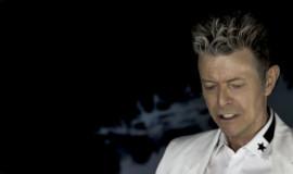 Bowie_UNE